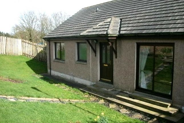 Thumbnail Bungalow to rent in Hatton, Peterhead, Aberdeenshire