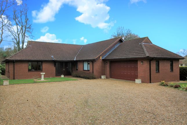 Thumbnail Detached bungalow for sale in Brackendown, West Hill, Ottery St. Mary