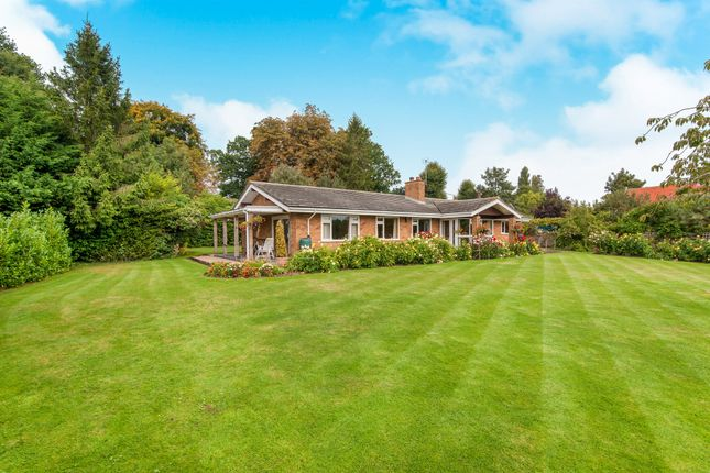 Thumbnail Detached bungalow for sale in Priory Road, Palgrave, Diss