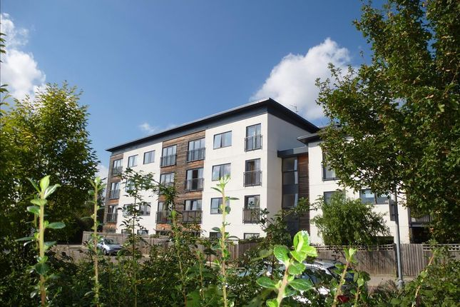 Thumbnail Flat to rent in Lemsford Road, Hatfield