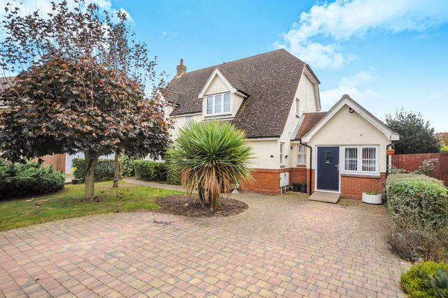 Thumbnail Detached house for sale in Notley Green, Great Notley, Braintree