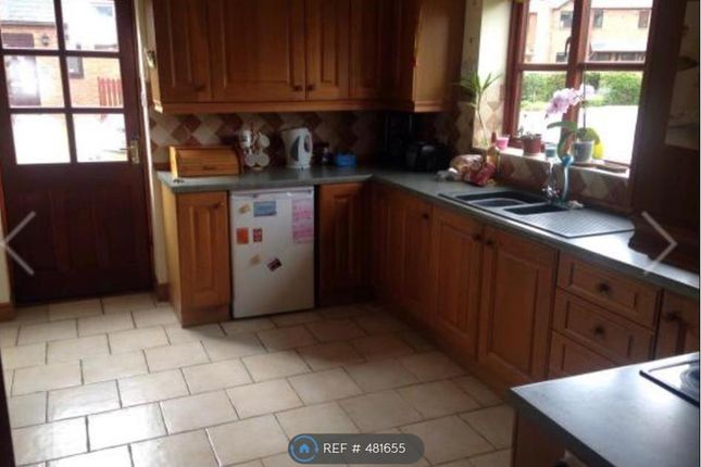 Thumbnail Detached house to rent in Cae Dafydd, Meifod