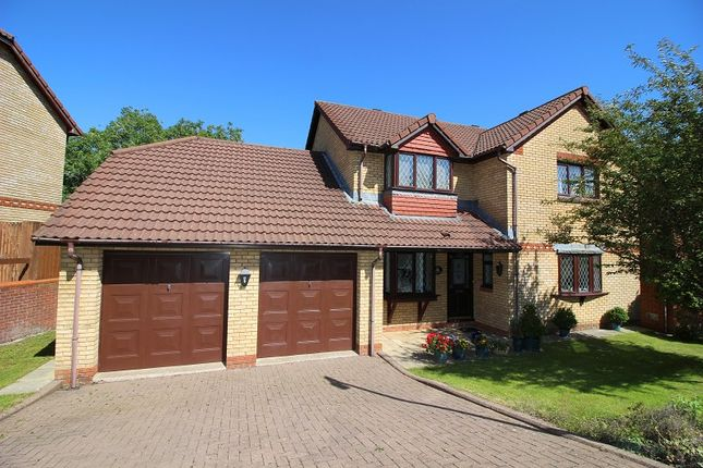 Thumbnail Detached house for sale in Briary Way, Brackla, Bridgend.