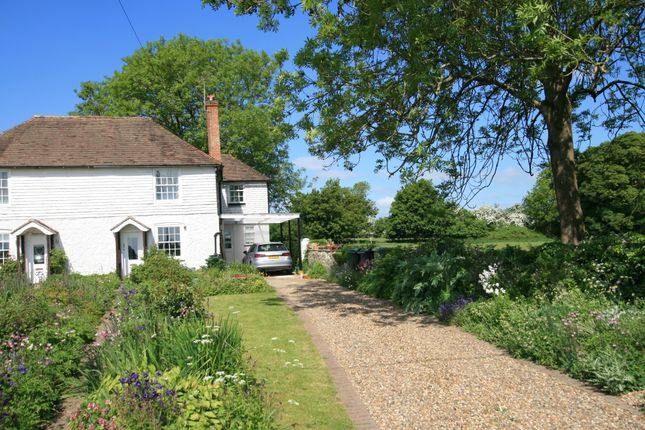 Thumbnail Cottage for sale in Long Row, Mersham, Ashford, Kent