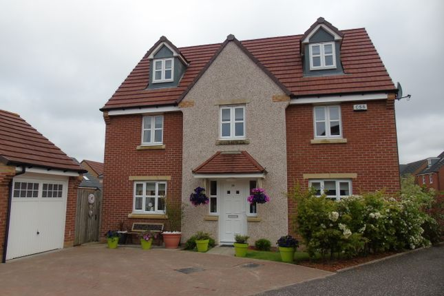 Thumbnail Detached house for sale in Ewart Drive, Cairnhill, Airdrie, North Lanarkshire