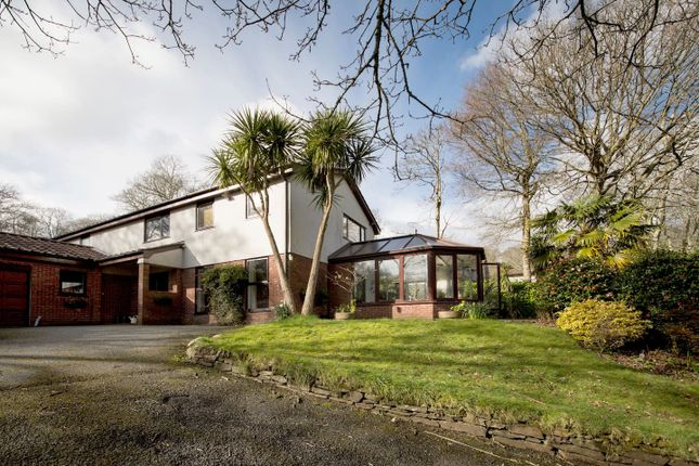 Thumbnail Detached house for sale in Wellington Plantation, Penelewey, Feock, Truro