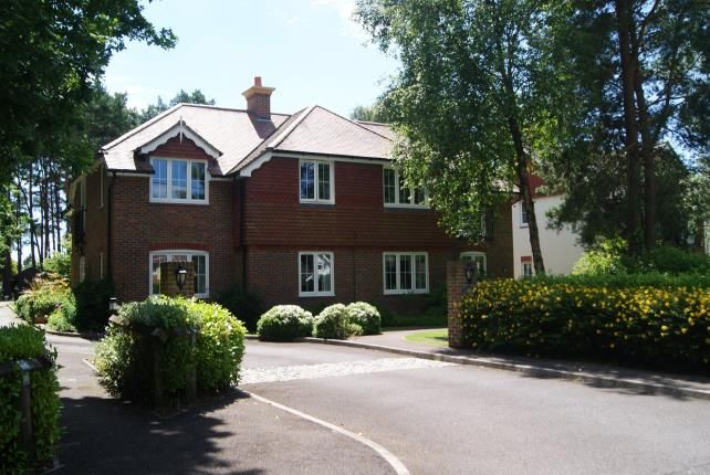 Thumbnail Flat for sale in Lions Lane, Ashley Heath, Ringwood