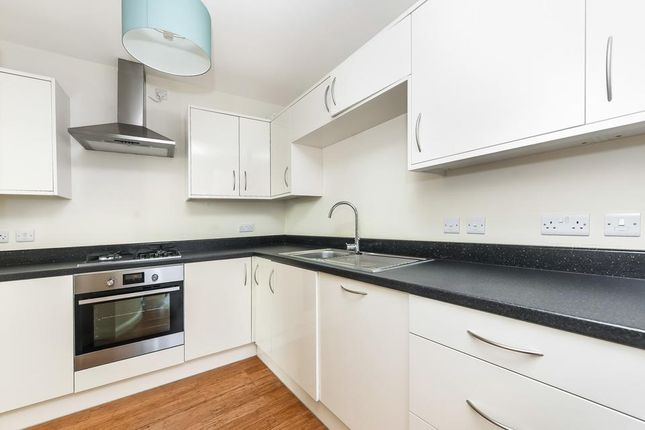 Thumbnail Semi-detached house to rent in Abernethy Road, London