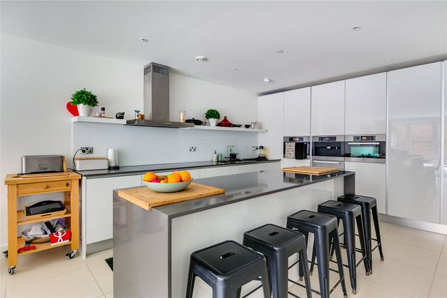 Thumbnail Detached house to rent in Havilland Mews, London