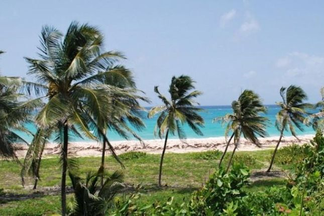 Thumbnail Land for sale in Paragon Land, Christ Church, Christ Church, Barbados