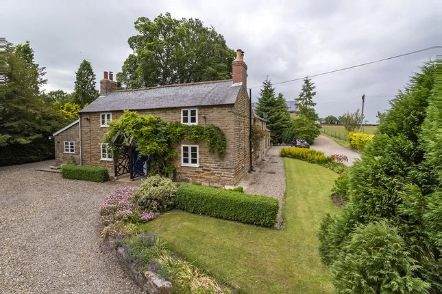 Thumbnail Detached house to rent in Whitwell, York