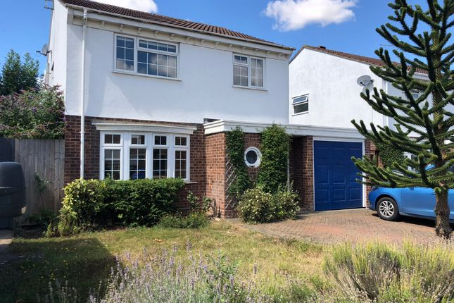 Thumbnail Detached house to rent in Crowson Way, Deeping St. James, Peterborough