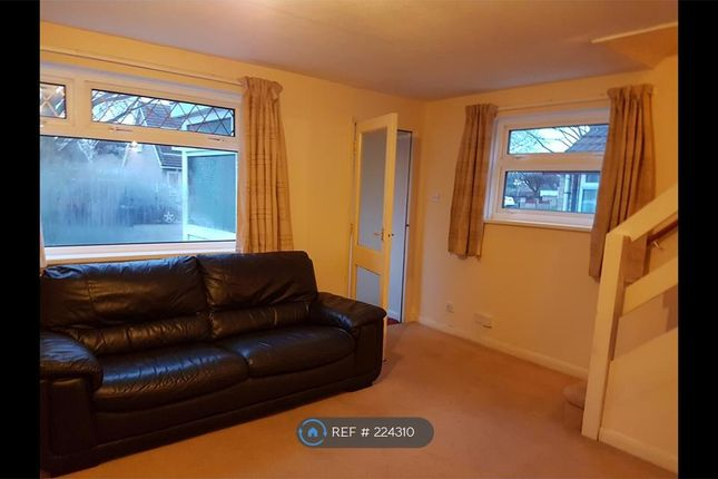 Thumbnail Semi-detached house to rent in Huggett Close, Leicester