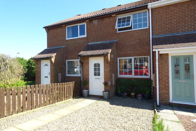 Thumbnail Terraced house to rent in Manor View, Newbiggin-By-The-Sea