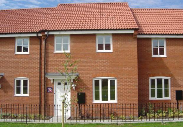 Thumbnail Terraced house to rent in Maye Dicks Road, Rushden