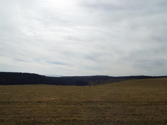 Front of Cyffylliog, Ruthin, Denbighshire LL15