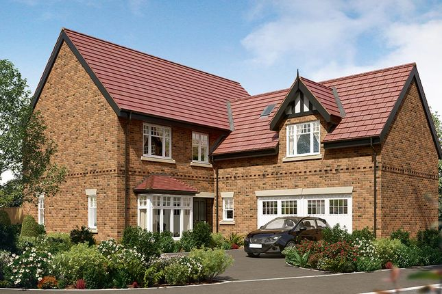 "Thumbnail Detached house for sale in ""The Langham"" at Wingfield Road, Alfreton"