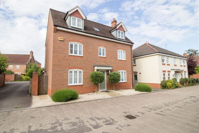 Thumbnail Detached house to rent in Powlingbroke, Hook