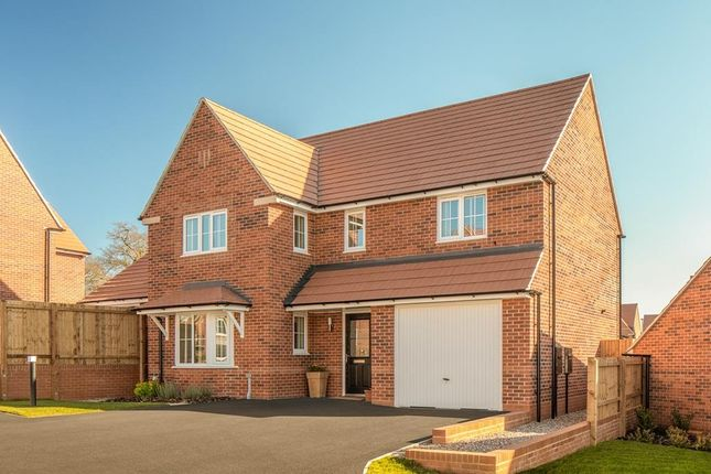 "Thumbnail Detached house for sale in ""Halesowen"" at Livingstone Road, Corby"