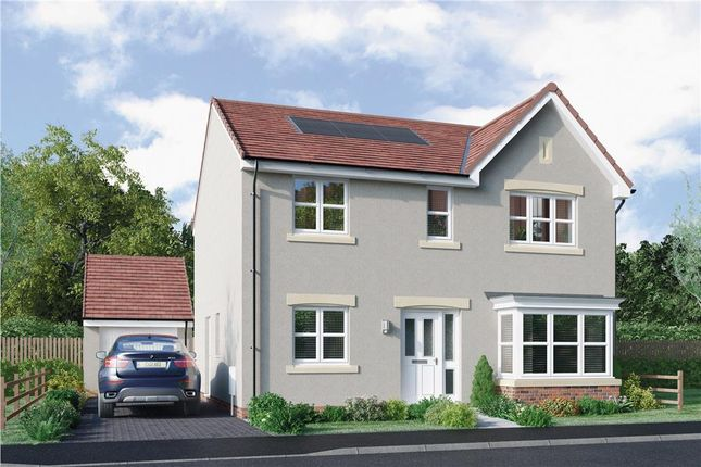 """4 bed detached house for sale in """"Grant"""" at Lasswade Road, Edinburgh EH17"""