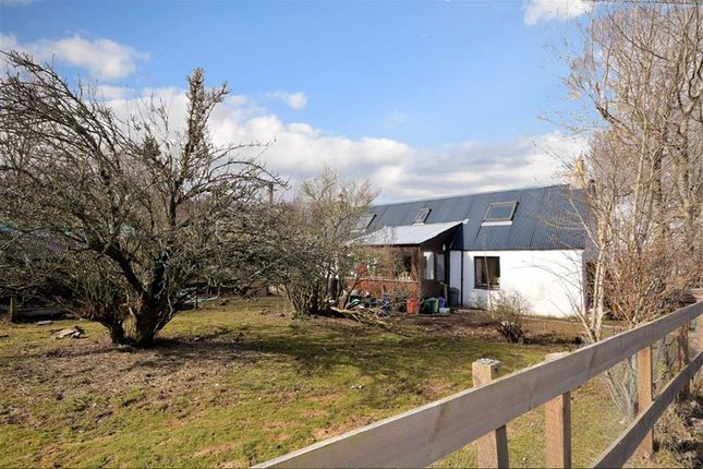 Thumbnail Cottage for sale in Kingussie