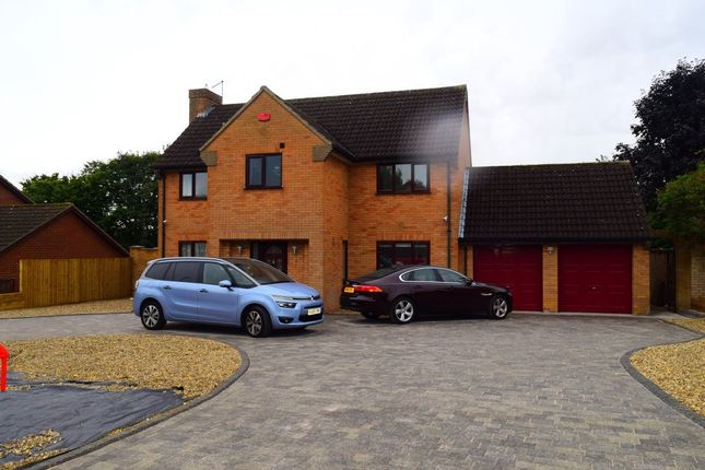 Thumbnail Detached house to rent in Rowlandson Close, Abington, Northampton