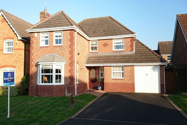 Thumbnail Detached house for sale in Clyde Avenue, Evesham