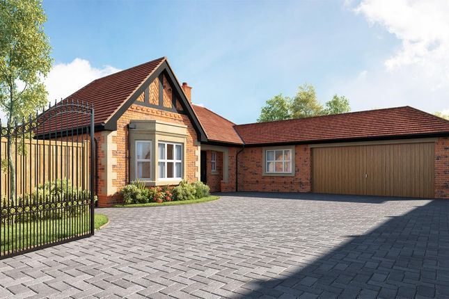 Thumbnail Detached bungalow for sale in Lime Avenue, Duffield, Belper