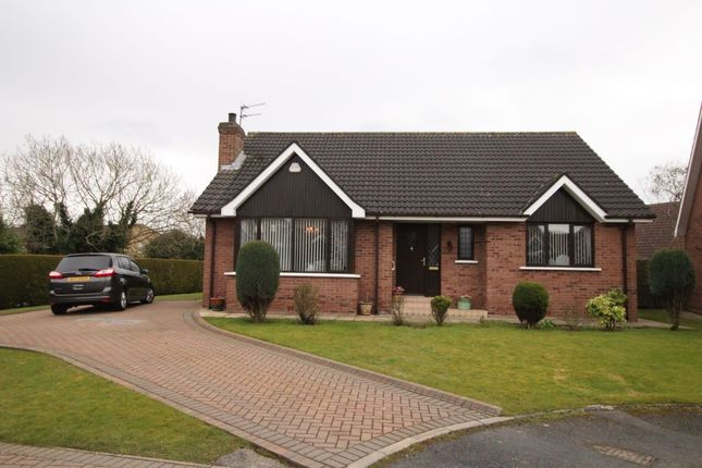 Thumbnail Bungalow for sale in Cairndore Road, Newtownards