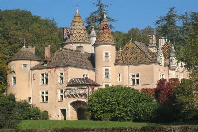Thumbnail Property for sale in La Chapelle De Bragny, Bourgogne, 71240, France