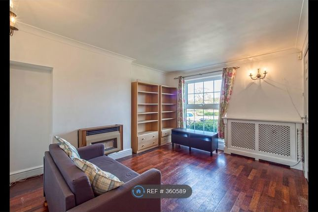 Thumbnail Semi-detached house to rent in Knightsfield, Welwyn Garden City