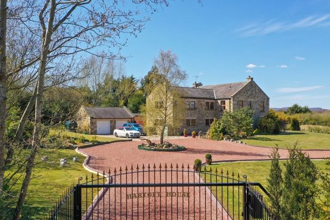 Thumbnail Detached house for sale in Longhorsley, Morpeth
