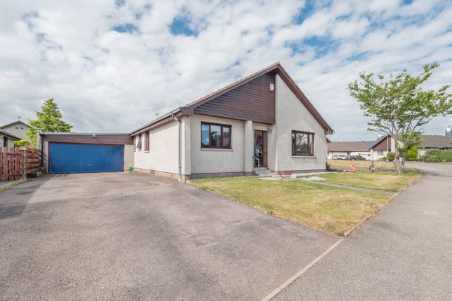 Thumbnail Bungalow for sale in Invergarry Park, St. Cyrus, Montrose