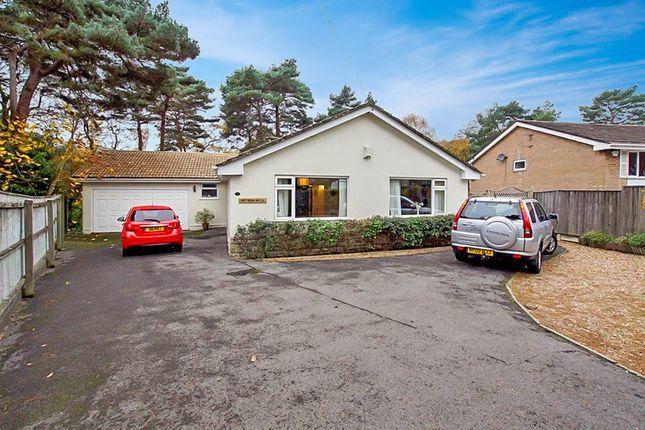 Thumbnail Detached bungalow for sale in Alton Road, Lower Parkstone, Poole
