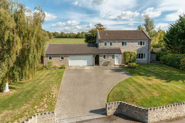 Thumbnail Detached house for sale in Shute Lane, Long Sutton, Langport