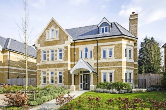 Thumbnail Detached house for sale in Havanna Drive, London