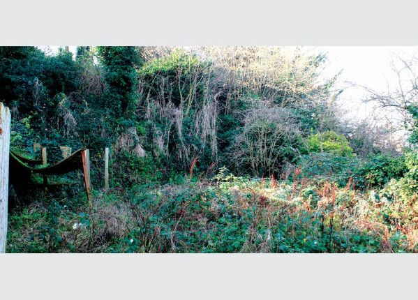 Thumbnail Land for sale in Picardy Road, Belvedere