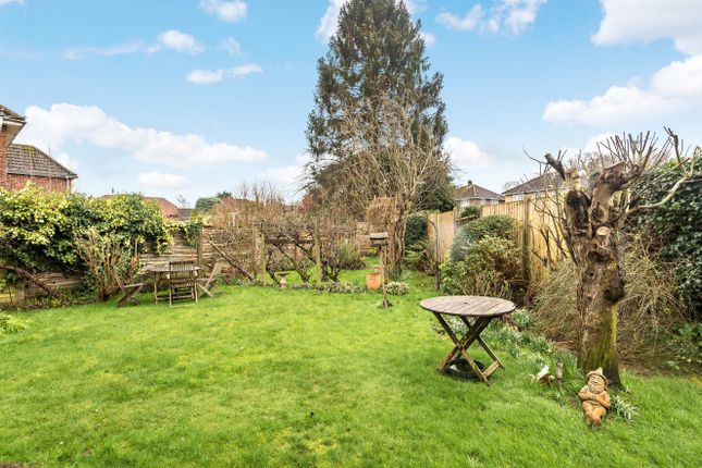 Garden of Barnfield Road, Petersfield GU31