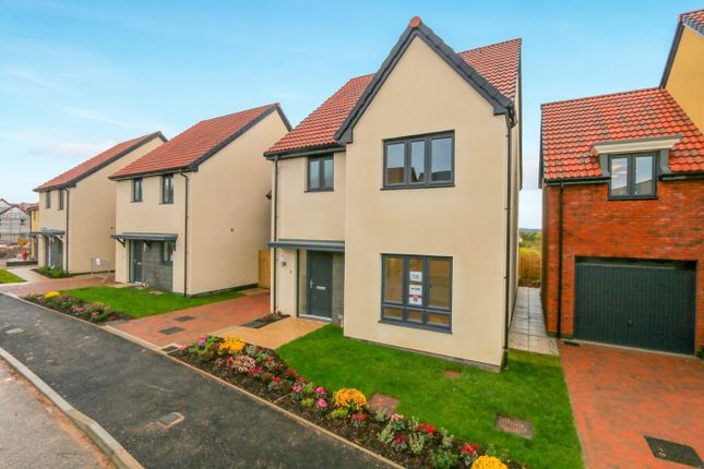 Thumbnail Detached house for sale in The Holden, Blackthorn Lane, Exeter