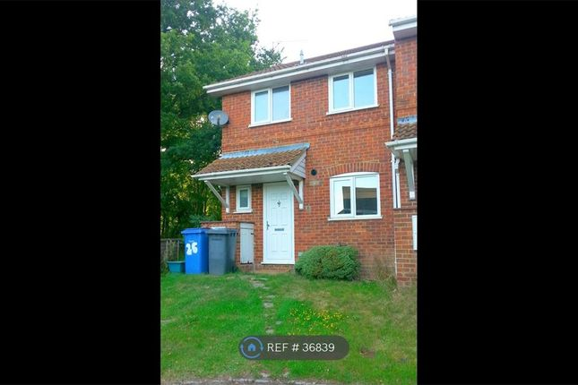 Thumbnail Semi-detached house to rent in Wheelers Hill, Hook