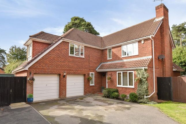 Thumbnail Detached house for sale in Frimley, Camberley