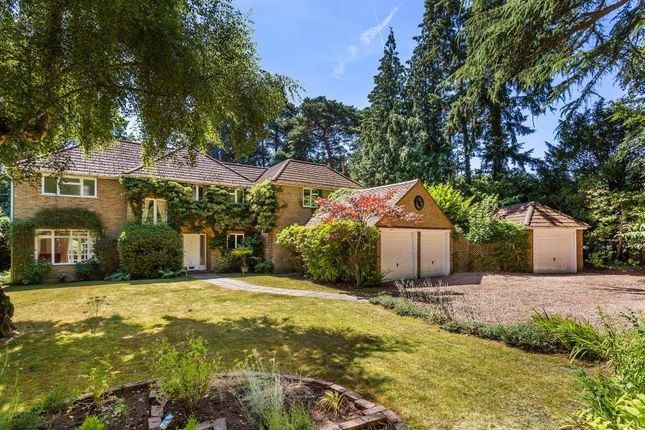 Thumbnail Detached house to rent in Blackdown Avenue, Pyrford, Woking