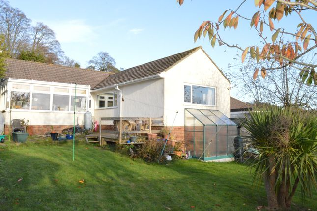 Thumbnail Detached bungalow for sale in Scoresby Close, Torquay