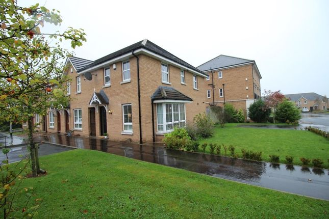 Thumbnail Terraced house for sale in Mornington Lane, Lisburn