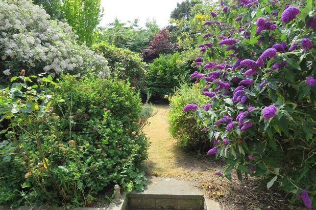 Garden of Peel Walk, Harborne, Birmingham B17