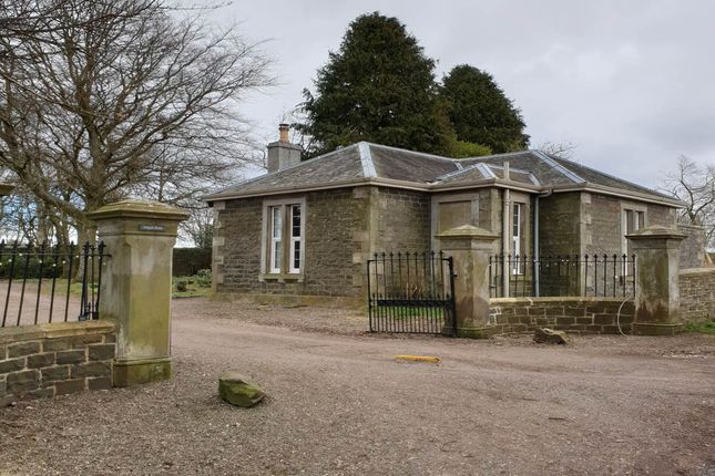 Thumbnail Detached bungalow to rent in Arngask Lodge, Glenfarg, Perth