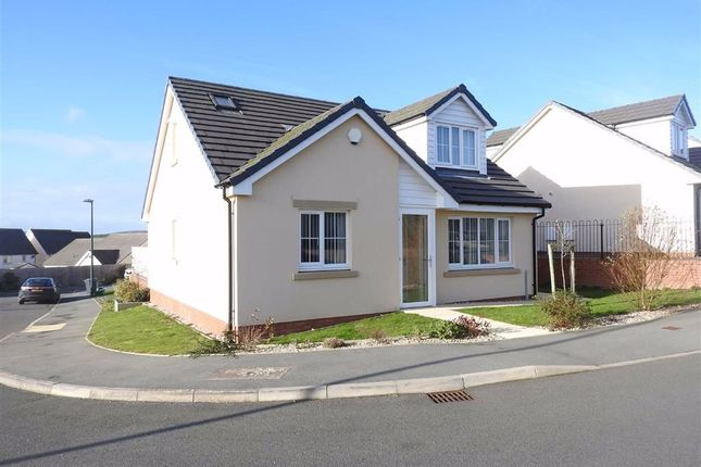 Thumbnail Detached bungalow for sale in Dol Y Dintir, Cardigan, Ceredigion