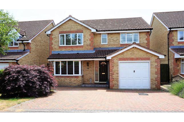 Thumbnail Detached house for sale in Magpie Close, Fareham