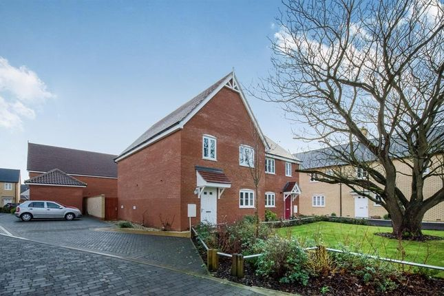 Thumbnail Property to rent in Trowel Place, Colchester