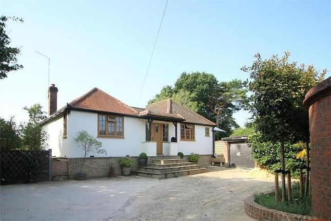 Thumbnail Detached bungalow for sale in Guildford Road, Mayford, Woking